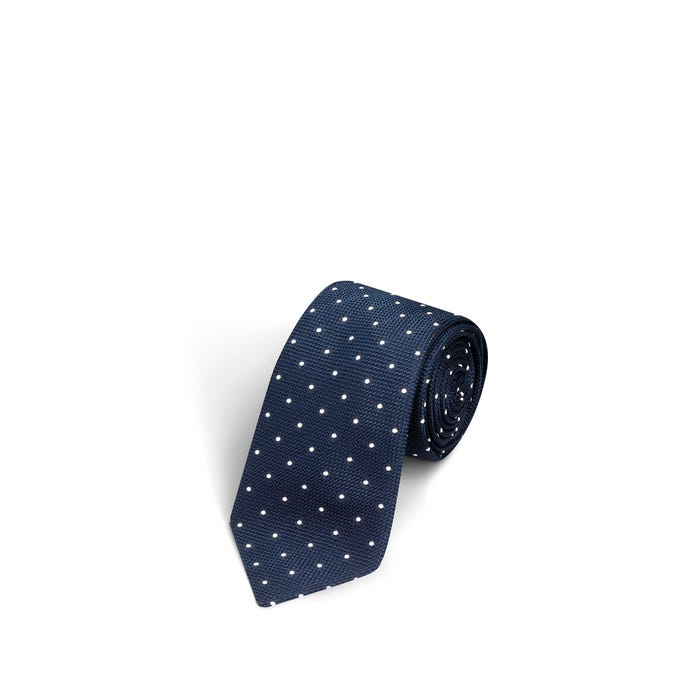 Small Dot Navy and White Tie