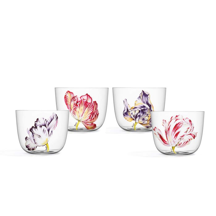 Tulip Crystal Tumblers Set of 4